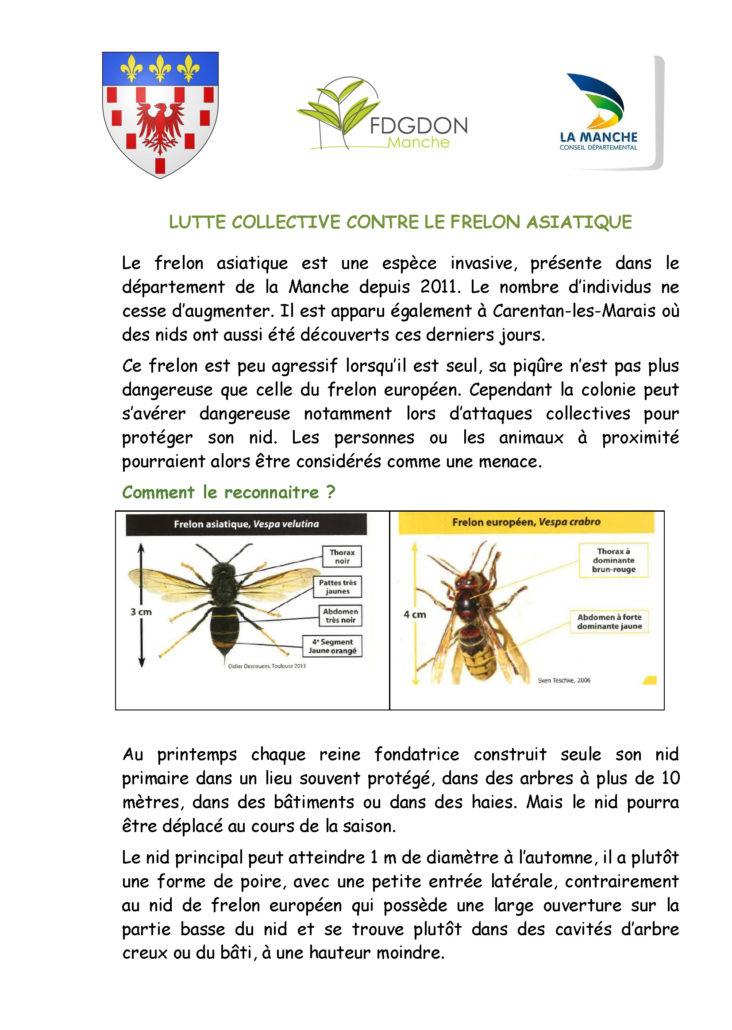 Frelon asiatique contenu_Page_1