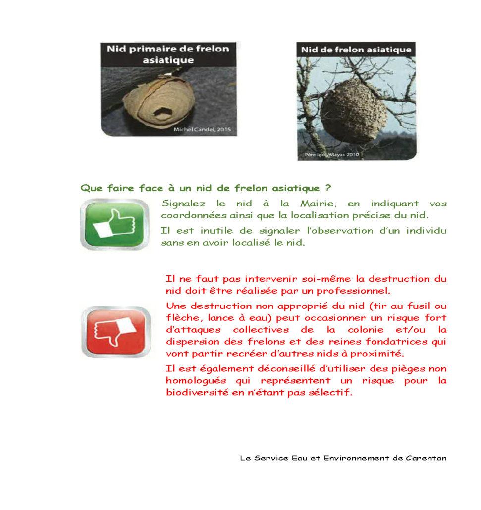 Frelon asiatique contenu_Page_2