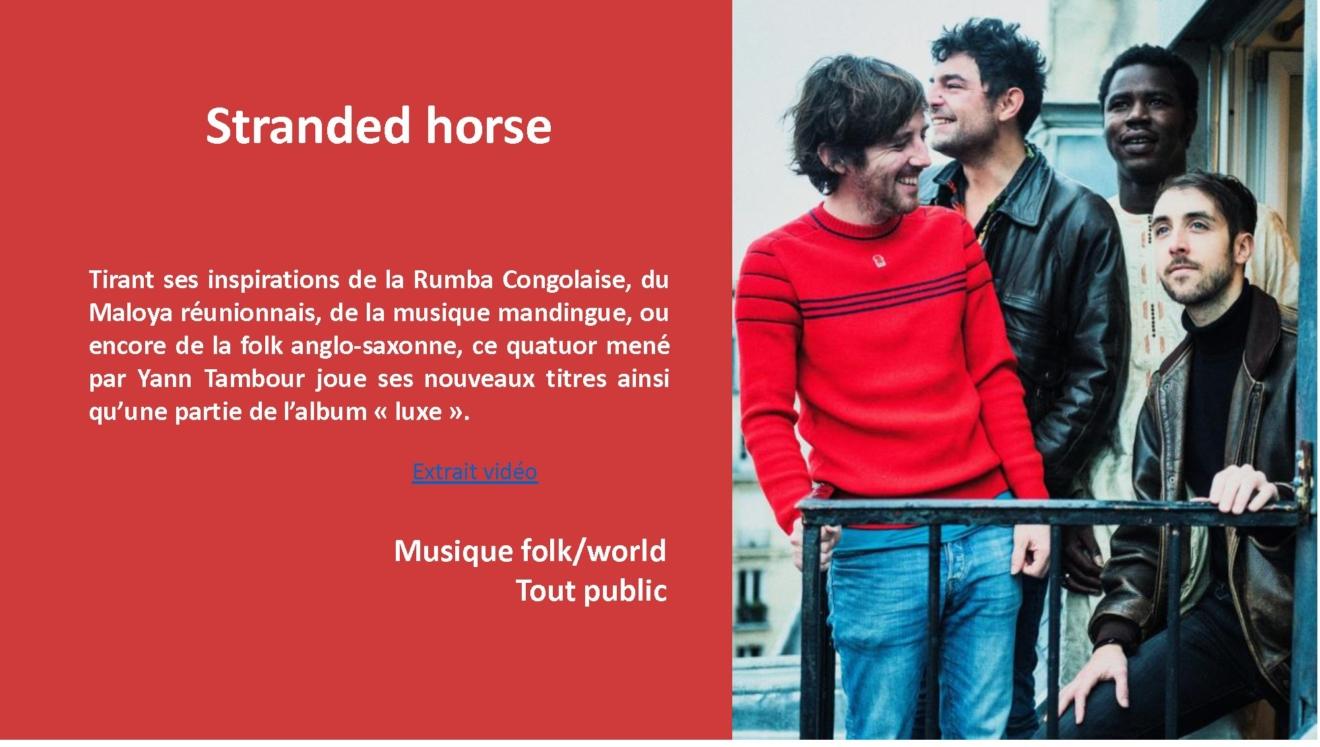 STRANDED HORSE - Descriptof avec photo
